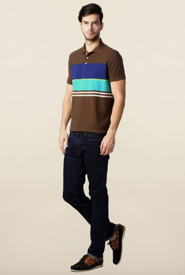 Peter England Brown & Blue Polo T-Shirt