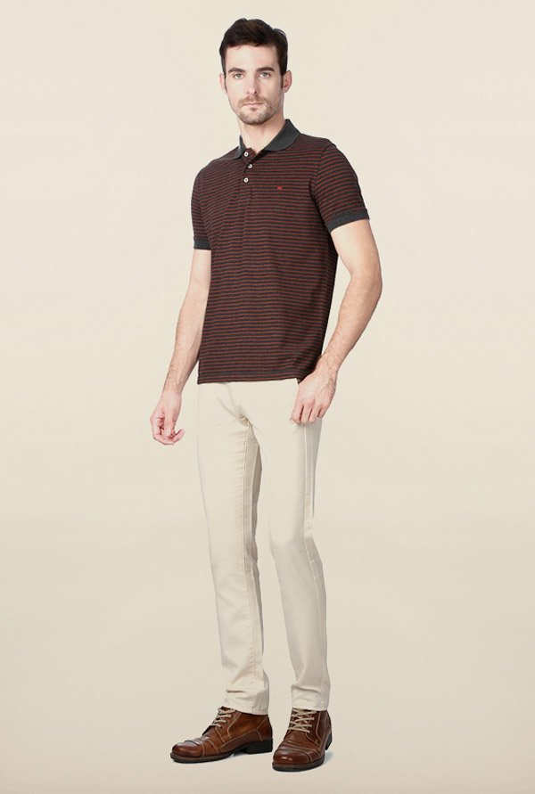 Peter England Red & Grey Striped Polo T-Shirt