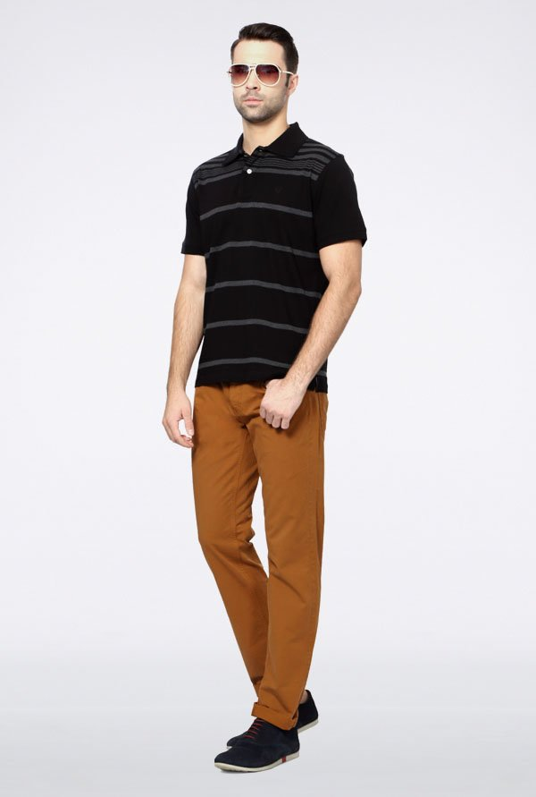 Allen Solly Black Striped Polo T-Shirt