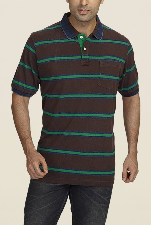 ColorPlus Brown Striped Polo T Shirt
