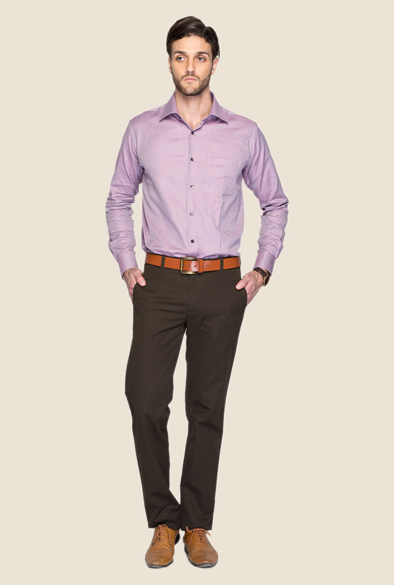 ColorPlus Brown Solid Chinos