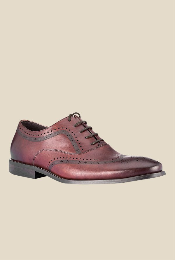 Tresmode Brown Brogue Shoes