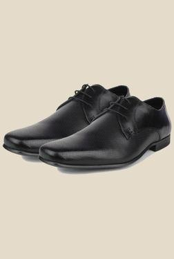 Red Tape Black Formal Shoes