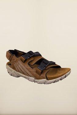 Woodland Brown Back Strap Sandals