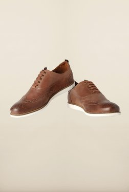Louis Philippe Brown Brogue Shoes - Mp000000000167081