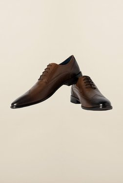 Louis Philippe Brown Brogue Shoes - Mp000000000164681