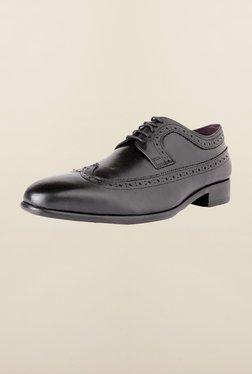 Louis Philippe Black Brogue Shoes - Mp000000000165976