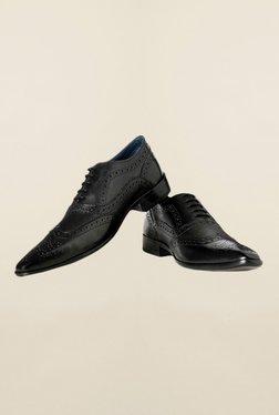 Louis Philippe Black Brogue Shoes - Mp000000000165390