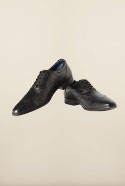 Louis Philippe Black Brogue Shoes - Mp000000000168035
