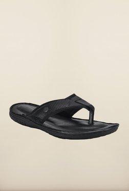 Franco Leone Black Slippers - Mp000000000203949
