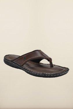 Franco Leone Brown Slippers