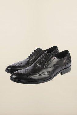 Cobblerz Black Brogue Formal Shoes - Mp000000000215581
