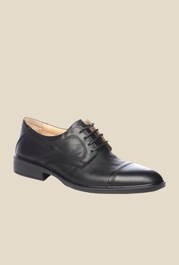 Pavers England Black Leather Derby Shoes - Mp000000000224409