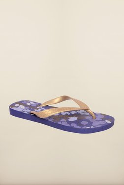 Ipanema Golden & Blue Flip Flops