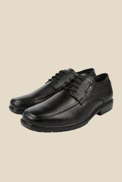 Spunk Swann Black Derby Formal Shoes