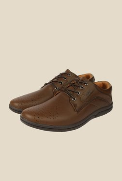 Spunk Rover Coffee Derby Shoes