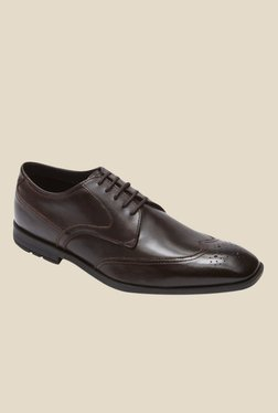 Rockport Global Road Brown Brogue Shoes