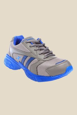 Sparx Grey & Royal Blue Running Shoes