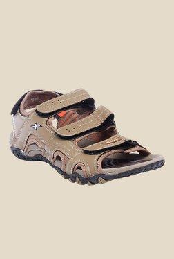 Sparx Khaki Floater Sandals - Mp000000000277550