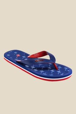 Sparx Royal Blue & Red Flip Flops