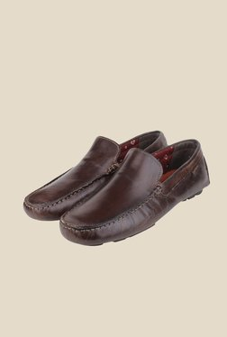 Red Tape Brown Leather Loafers - Mp000000000285015