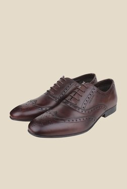 Red Tape Brown Brogue Shoes