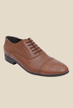 Salt 'n' Pepper Koop Almond Oxford Shoes