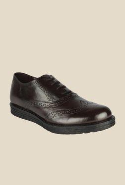 Salt 'n' Pepper Cica Brown Oxford Shoes