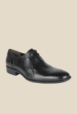 Salt 'n' Pepper Parker Black Derby Shoes - Mp000000000345930