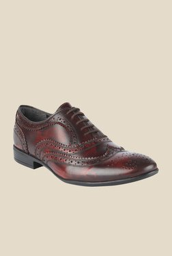 Salt 'n' Pepper Koop Wine Brogue Shoes
