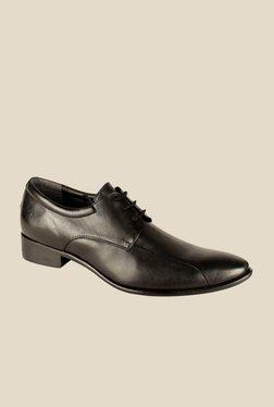 Salt 'n' Pepper Senator Black Derby Shoes - Mp000000000344958