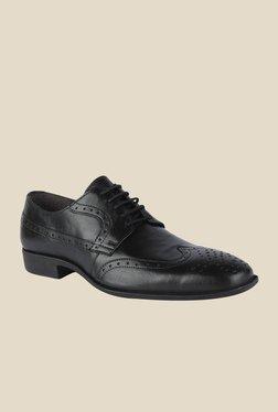 Salt 'n' Pepper Parker Black Derby Shoes