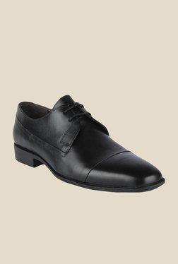 Salt 'n' Pepper Parker Black Derby Shoes - Mp000000000347199