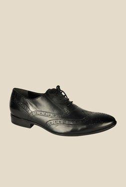 Salt 'n' Pepper Koop Black Oxford Shoes