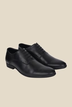 DaMochi Elixir Black Oxford Shoes