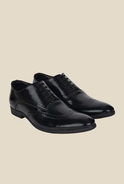 DaMochi Darwin Black Brogue Shoes