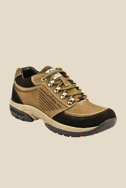Lee Cooper Brown & Black Casual Shoes