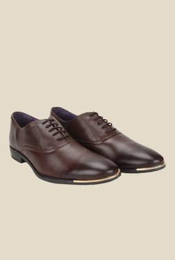 Knotty Derby Vincent Brown Oxford Shoes