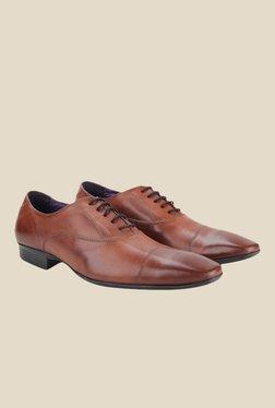 Knotty Derby Arthur Toe Cap Tan Oxford Shoes