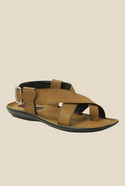 Get Glamr Ashton Brown Back Strap Sandals