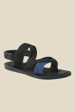 Get Glamr Miller Blue & Black Back Strap Sandals