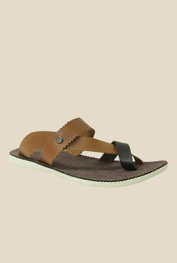 Get Glamr Cohen Brown & Black Back Strap Sandals