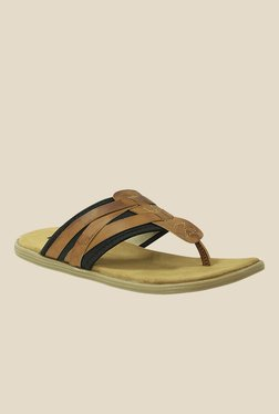 Get Glamr Monfret Brown & Black Slide Sandals