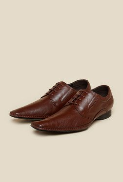 Da Vinchi by Metro Brown Derby Shoes