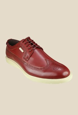 US Polo Assn. Hayden Dark Brown Brogue Shoes