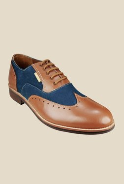 US Polo Assn. Ayden Tan & Blue Oxford Shoes