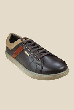US Polo Assn. Austin Dark Brown Sneakers