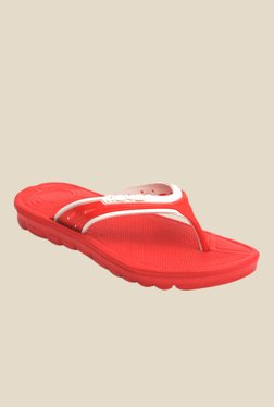Men Flip Flops & Slippers - Clearance Sale discount offer  image 3