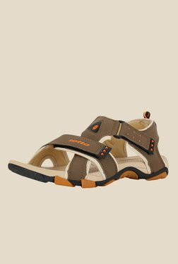 Lotto Musketeers Brown & Beige Floater Sandals