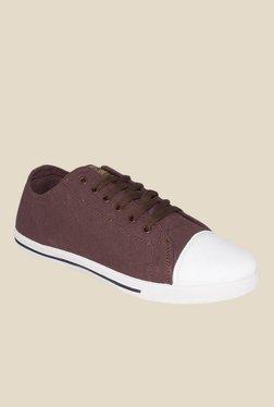 Globalite Strike 4 In 1 Brown Sneakers